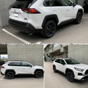 2020 RAV4 TRD off road